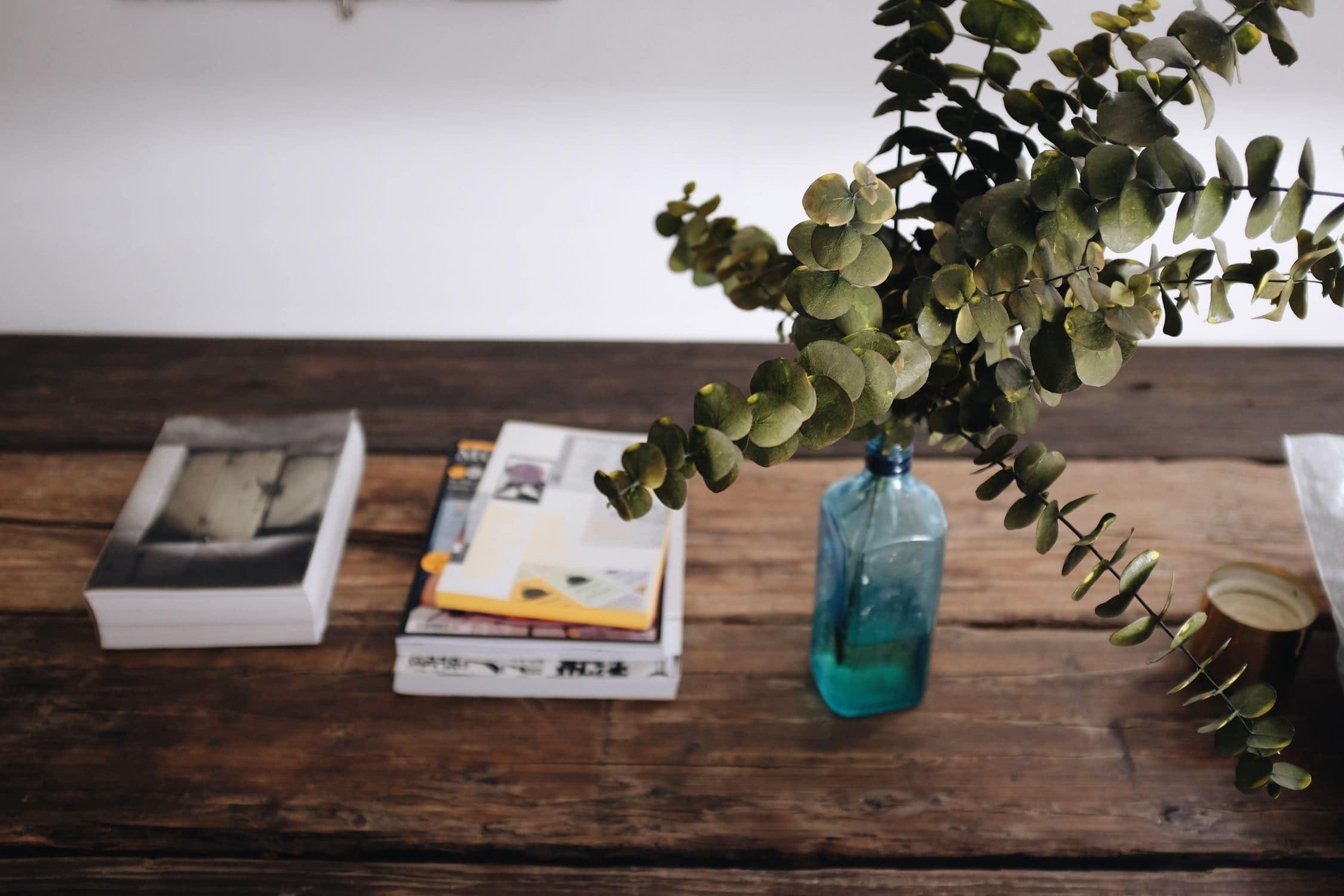 drzewko na biurku