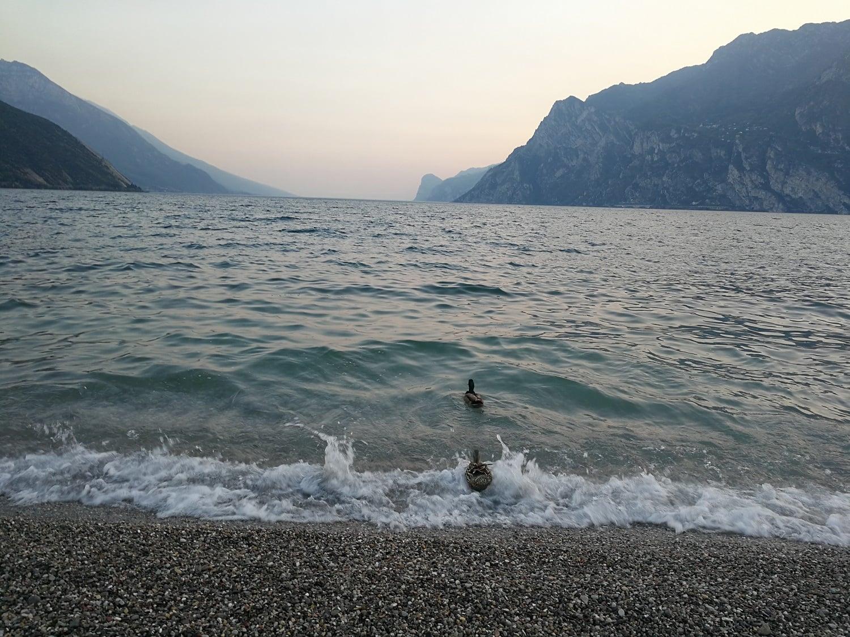 Jezioro Garda - gwarancja udanych wakacji 27