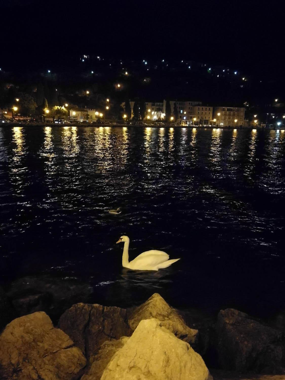 Jezioro Garda - gwarancja udanych wakacji 34