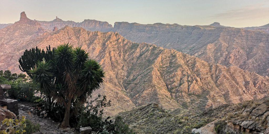 Gran Canaria, Acusa Seca
