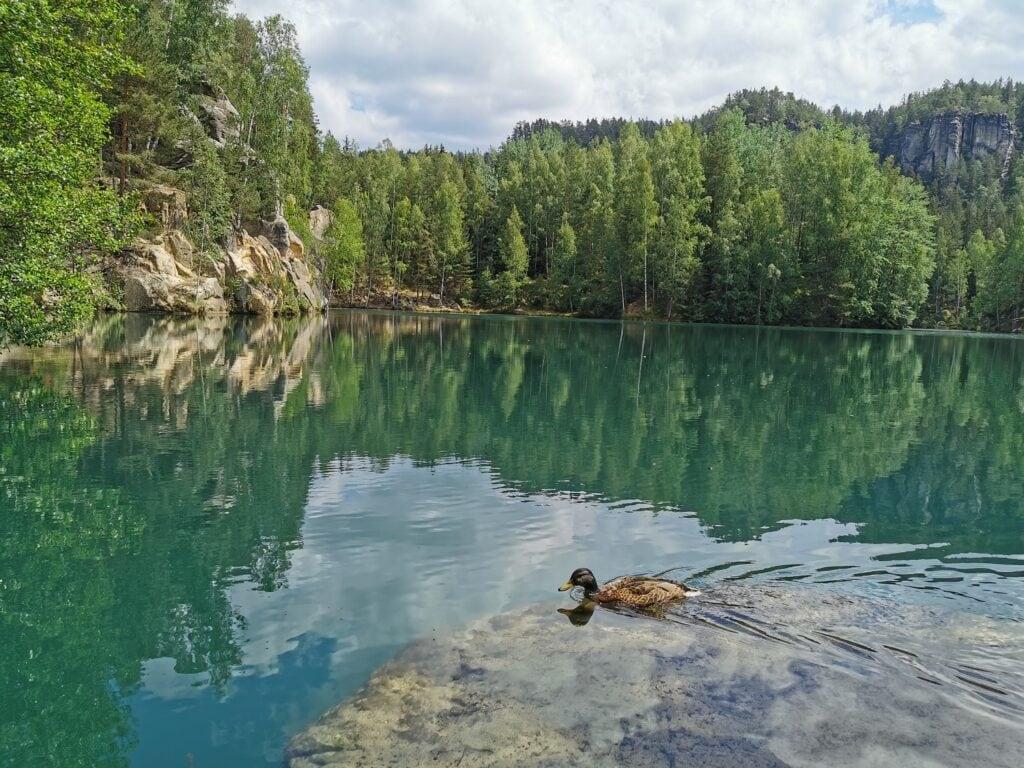 Jezioro w Skalnym Mieście w Adrspach